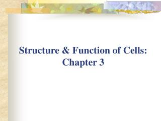 Structure & Function of Cells:  Chapter 3