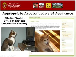 Appropriate Access: Levels of Assurance