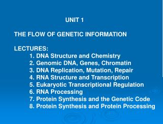 UNIT 1 THE FLOW OF GENETIC INFORMATION LECTURES: 	1. DNA Structure and Chemistry 	2. Genomic DNA, Genes, Chromati