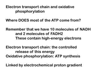 Electron transport chain and oxidative 	phosphorylation Where DOES most of the ATP come from? Remember that we have 10 m