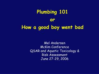 Plumbing 101 or How a good boy went bad
