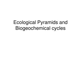 Ecological Pyramids and Biogeochemical cycles