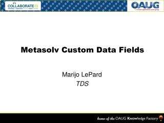 Metasolv Custom Data Fields
