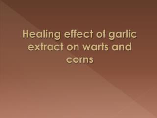 Healing effect of garlic extract on warts and corns