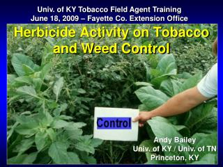 Herbicide Activity on Tobacco and Weed Control