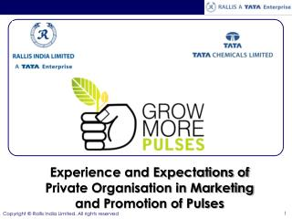 Experience and Expectations of Private Organisation in Marketing and Promotion of Pulses