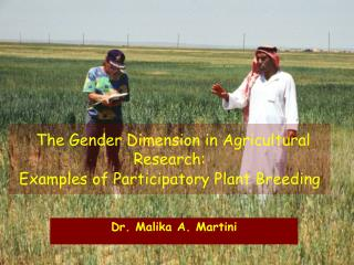 The Gender Dimension in Agricultural Research: Examples of Participatory Plant Breeding