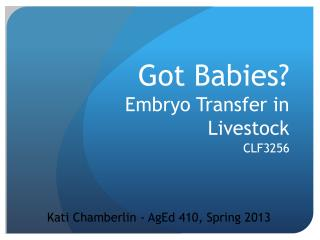 Got Babies? Embryo Transfer in Livestock