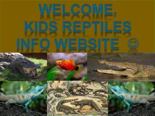 Welcome, Kids reptiles Info website   