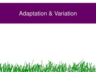 Adaptation & Variation