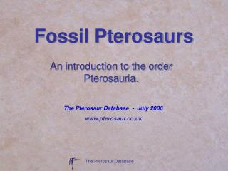 Fossil Pterosaurs