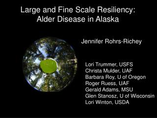 Large and Fine Scale Resiliency:  Alder Disease in Alaska