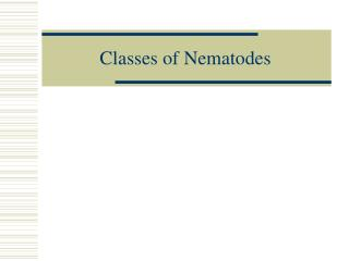 Classes of Nematodes