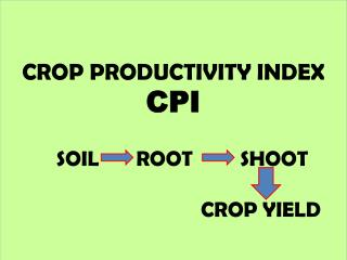 CROP PRODUCTIVITY INDEX CPI           SOIL       ROOT         SHOOT                                  CROP YIELD
