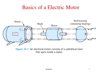 SEPARATELY ECXITED DC MOTOR