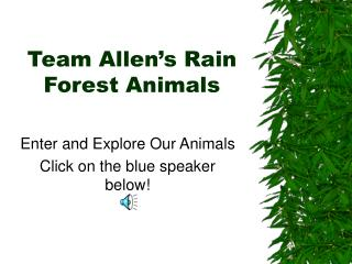 Team Allen's Rain Forest Animals