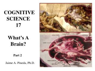 COGNITIVE   SCIENCE          17    What's A      Brain?             Part 2   Jaime A. Pineda, Ph.D.