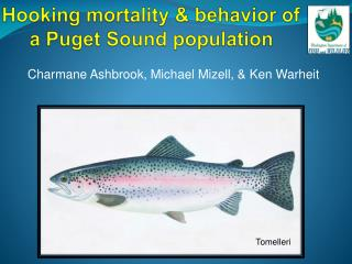 Hooking mortality & behavior of a Puget Sound population