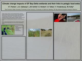Climate change impacts of SF Bay-Delta wetlands and their links to pelagic food webs