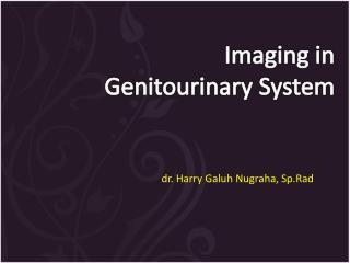 I maging in Genitourinary  S ystem
