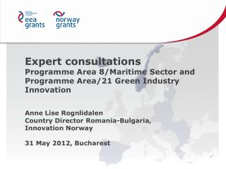 Expert consultations  Programme Area 8/Maritime  Sector  and Programme Area/21 Green  Industry  Innovation Anne Lise  R