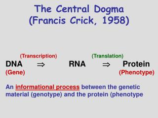 The Central Dogma (Francis Crick, 1958)