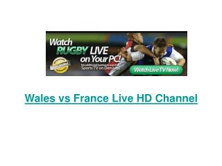 Wales vs France Live Stream Rugby (RWC) Semi Final Free Onli
