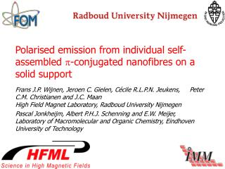 Polarised emission from individual self-assembled   -conjugated nanofibres on a solid support