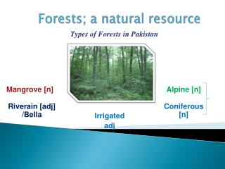 Forests; a natural resource