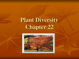 Plant Diversity Chapter 22