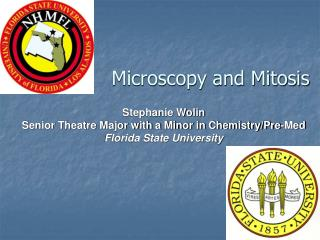 Microscopy and Mitosis
