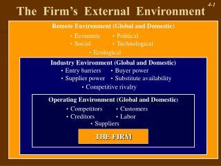 The  Firm's  External  Environment