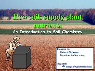 How soils supply plant nutrients An Introduction to Soil Chemistry