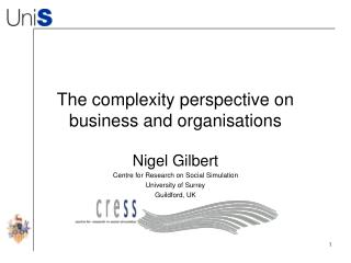 The complexity perspective on business and organisations
