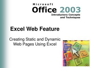 Excel Web Feature
