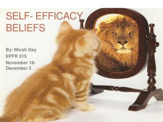 Self- Efficacy Beliefs