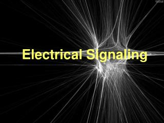 Electrical Signaling