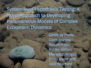 System-level Hypothesis Testing: A Novel Approach to Developing Parsimonious Models of Complex Ecosystem Dynamics