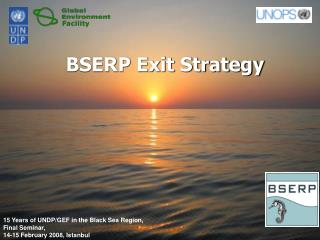 BSERP Exit Strategy