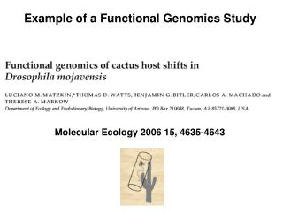 Example of a Functional Genomics Study