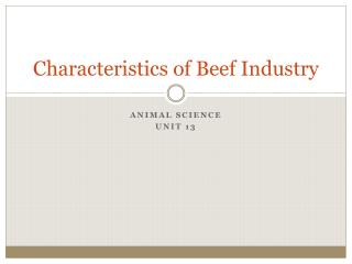 Characteristics of Beef Industry
