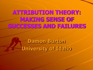 ATTRIBUTION THEORY:  MAKING SENSE OF SUCCESSES AND FAILURES