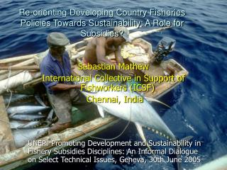 Re-orienting Developing Country Fisheries Policies Towards Sustainability: A Role for Subsidies?