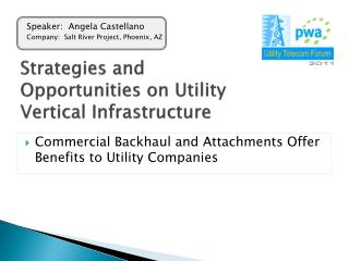 Strategies and Opportunities on Utility Vertical Infrastructure