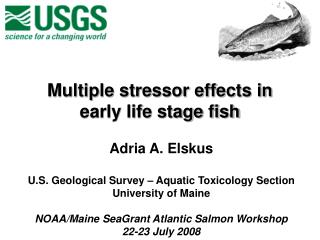 Multiple stressor effects in early life stage fish