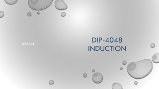 DIP-4048 Induction