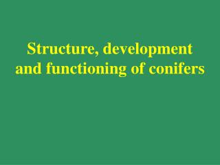 Structure, development and functioning of conifers