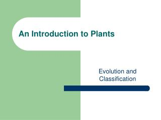 An Introduction to Plants