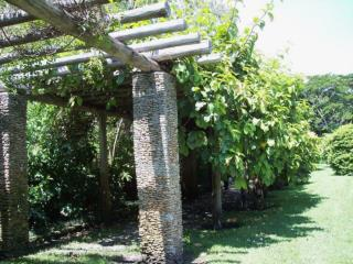 VINES …  An Underutilized Source   of Color and Interest  in the Landscape