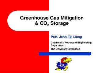 Greenhouse Gas Mitigation & CO 2  Storage